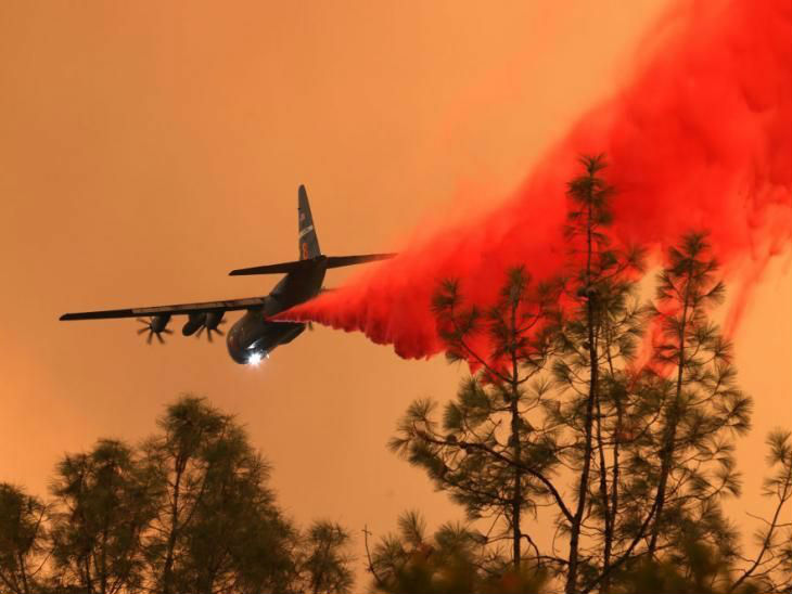 Fire In California Forests | 50 Houses Burnt | Pilot Killed After Helicopter Crash